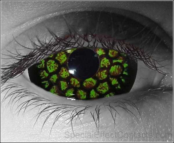 freaky-contact-lenses (5)