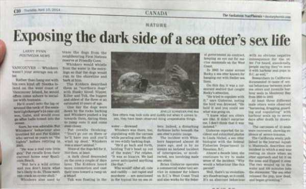 funny-news-headlines (11)