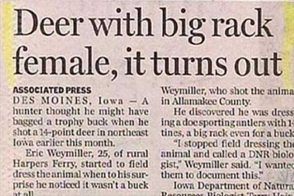 funny-news-headlines (2)