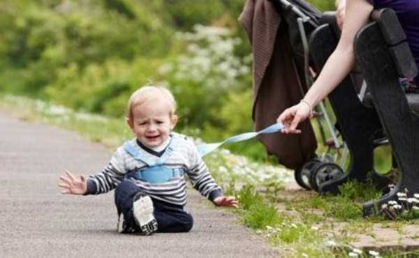 kids-on-leashes (11)