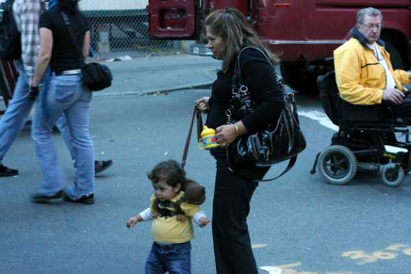 kids-on-leashes (17)