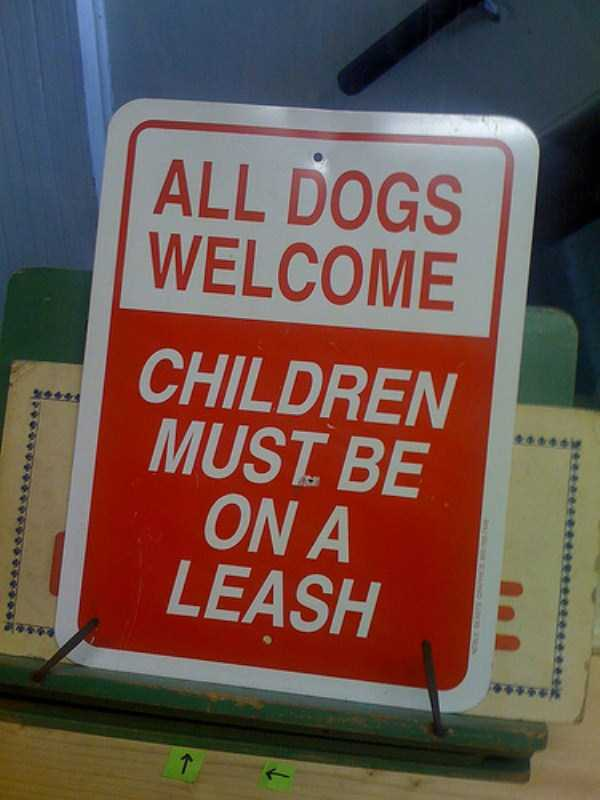kids-on-leashes (21)