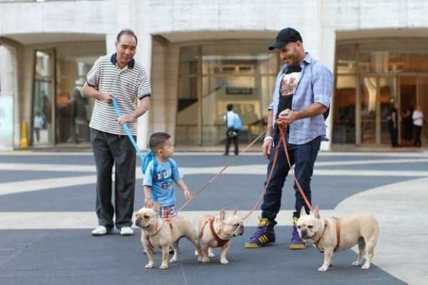 kids-on-leashes (36)