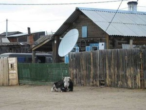 Meanwhile in Russia (30 photos) 7