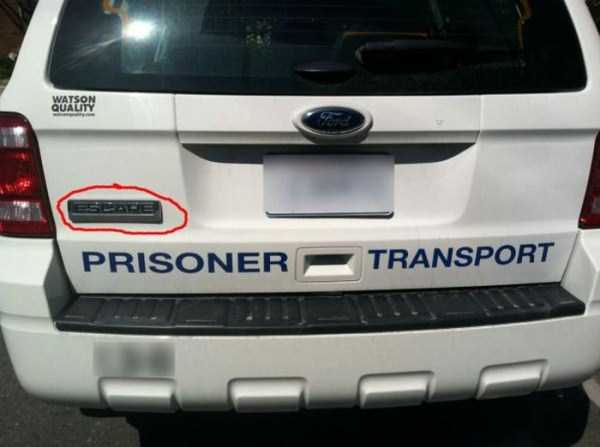 photos-with-irony (2)