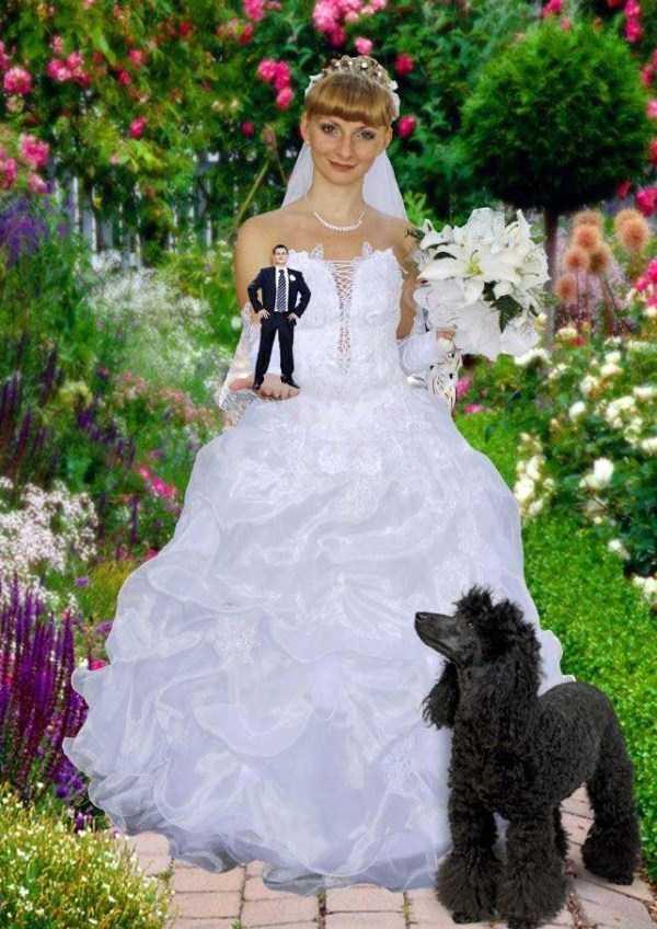 strange-russian-wedding-pics (25)