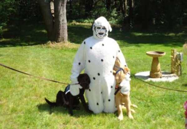 wtf-dogs-pictures (16)