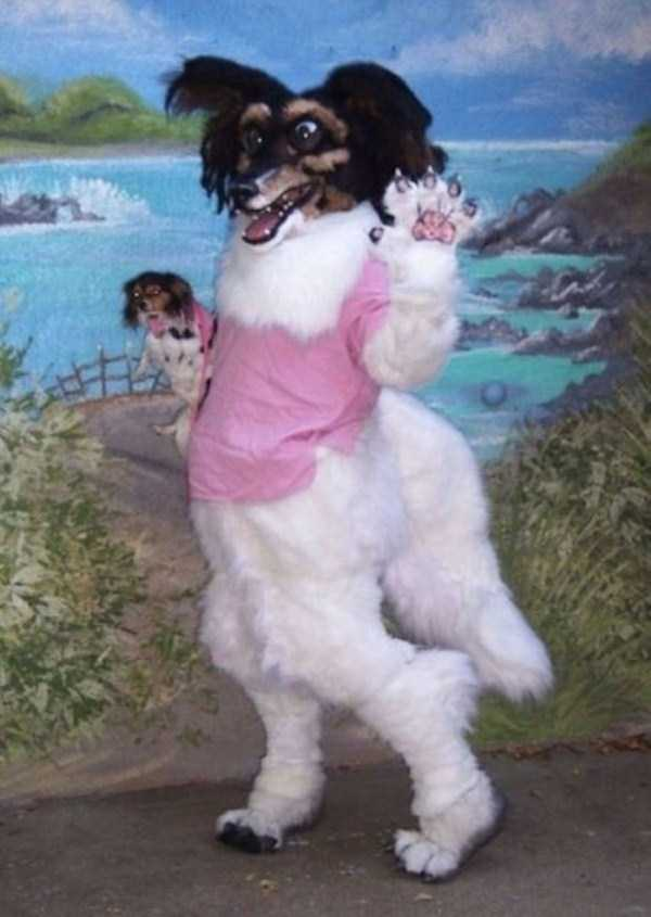 wtf-dogs-pictures (34)
