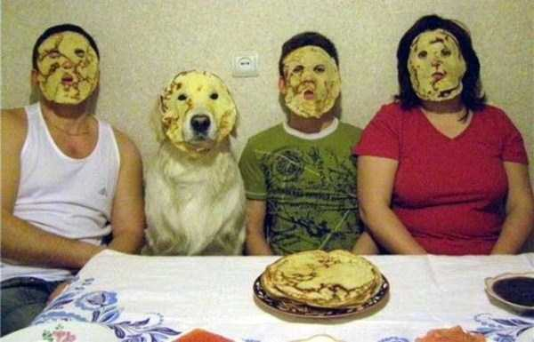 wtf-dogs-pictures (53)