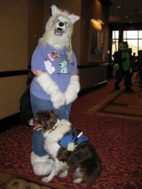 wtf-dogs-pictures (62)