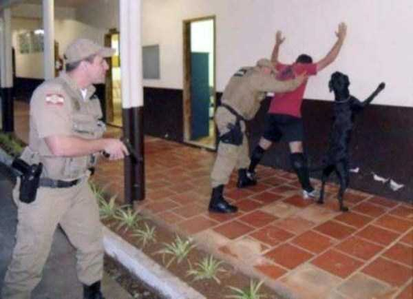 wtf-dogs-pictures (8)