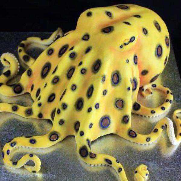 amazing-bithday-cakes (21)