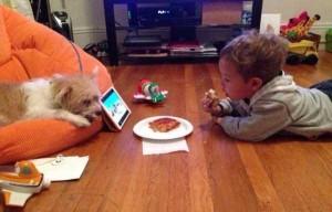Animals Love Pizza Too (36 photos) 19