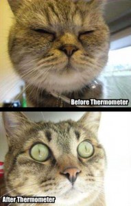 36 Funny Before and After Photos (36 photos) 12