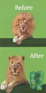 36 Funny Before and After Photos (36 photos) 13