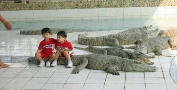 Meanwhile on a Crazy Continent Known as Asia (50 photos) 9
