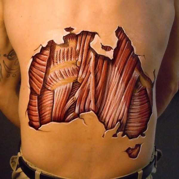 danny-quirk-anatomical-paintings (7)