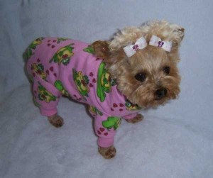 Dogs in Pijamas are Ridiculously Cute (24 photos) 5