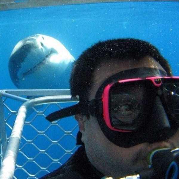 extreme-selfies (17)