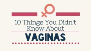 Fascinating Facts About Vagina (12 photos) 12