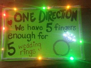 25 Funny and Creative Concert Signs (25 photos) 16