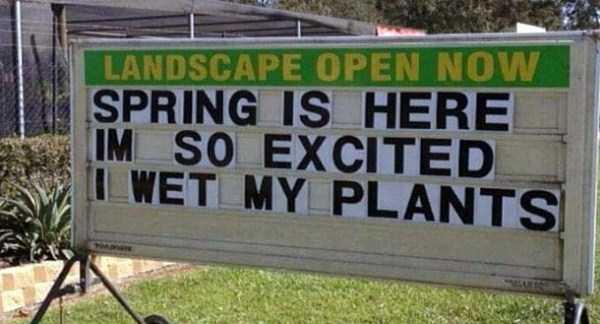 funny-spring-photos (20)