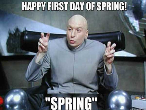 funny-spring-photos (7)
