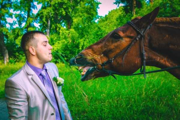 horrible-russian-wedding-photos (9)
