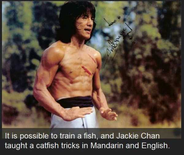 jackie-chan-facts (21)