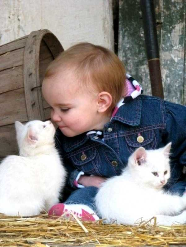kids-and-pets (3)