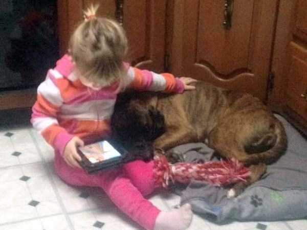 kids-and-pets (32)