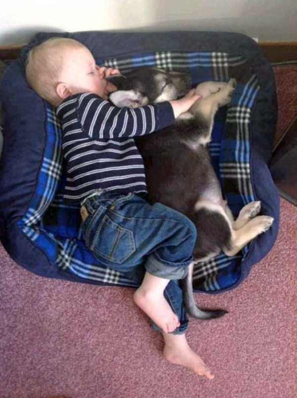kids-and-pets (35)