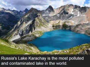Shocking and Dramatic Facts About Pollution (15 photos) 11