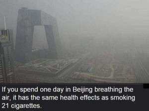 Shocking and Dramatic Facts About Pollution (15 photos) 3