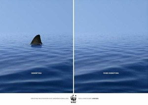Powerful Advertisements That Will Get You Thinking (41 photos) 4