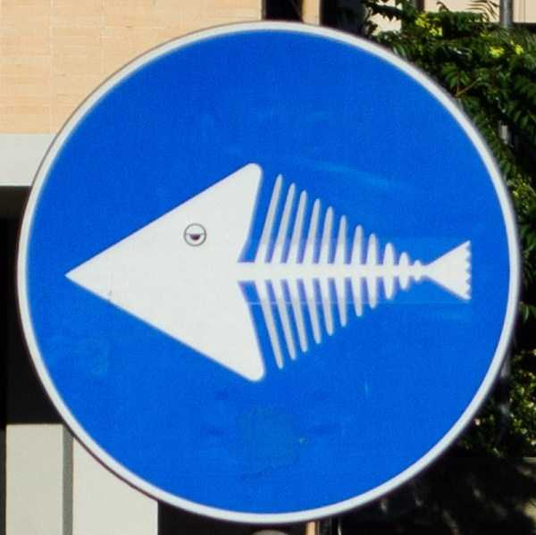traffic-signs-in-florence (32)