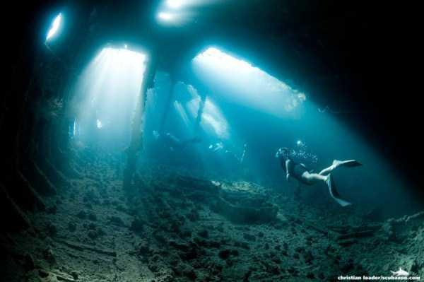 underwater-photographs (15)
