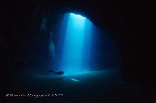 underwater-photographs (30)