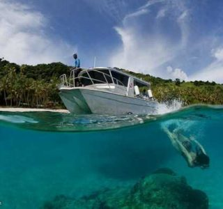 Mesmerizing Photos of Life Underwater (45 photos)