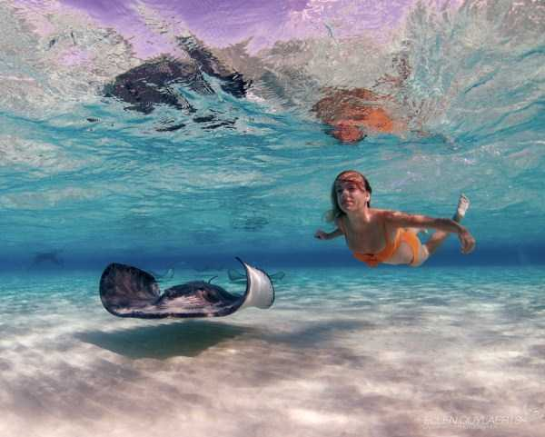 underwater-photographs (4)