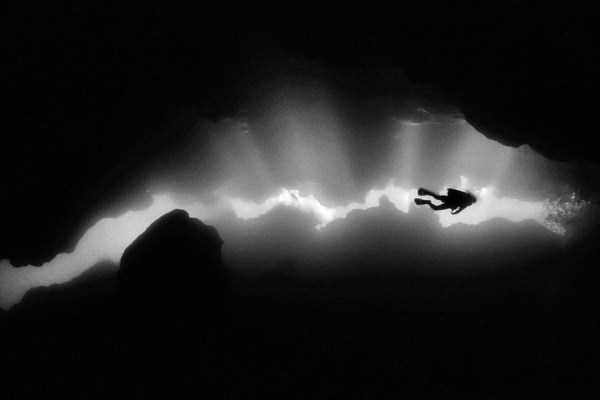 underwater-photographs (44)