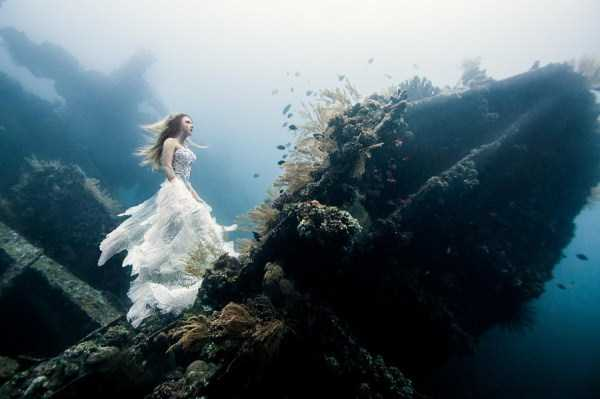 underwater-photographs (7)