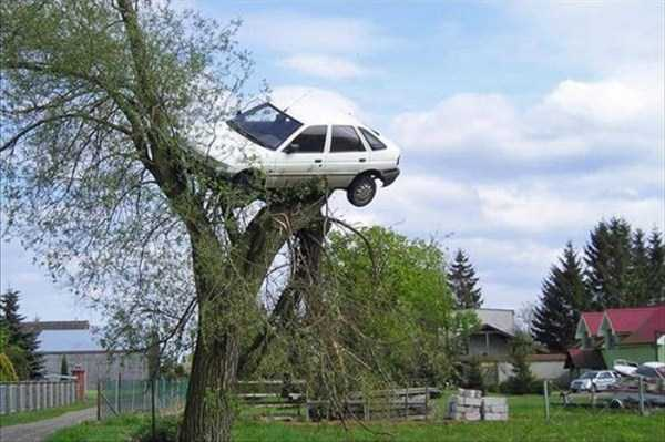 cars-in-bizarre-situations (4)