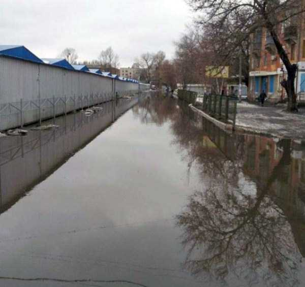 crazy-pictures-from-russia (14)