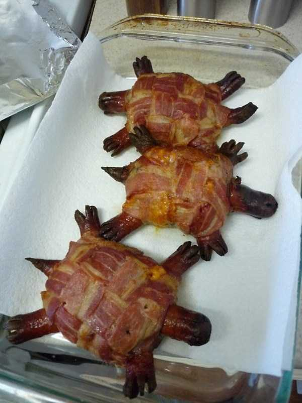 crazy-things-made-out-of-bacon (14)