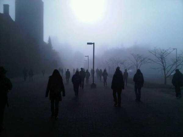 creepy-wtf-pictures (24)
