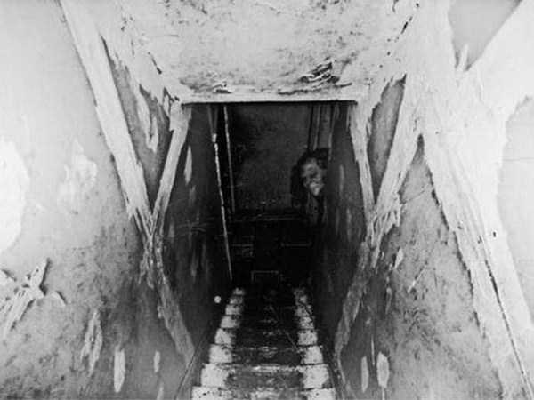 creepy-wtf-pictures (36)