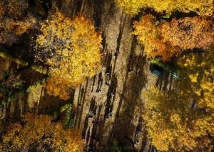 Spectacular Aerial Photos Taken With a Drone (38 photos) 3