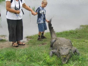 A Place Where People and Crocodiles Coexist Peacefully (13 photos) 3