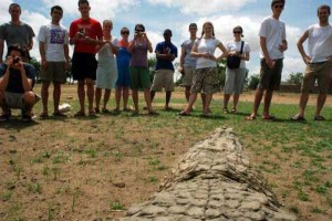 A Place Where People and Crocodiles Coexist Peacefully (13 photos) 5